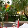 Tropepflanzen Restaurant Florida in Studen (Bern / Seeland)]