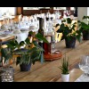 Restaurant Bren - The place to eat in Wengen