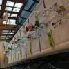 Restaurant Genossenschaft Frohsinn in Weinfelden