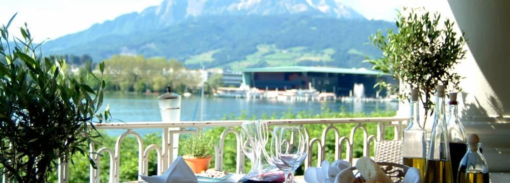 Restaurants in Lucerne: Restaurant Olivo