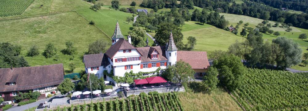Romantik Restaurant Schloss Weinstein in Marbach