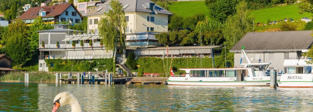 Seehotel Delphin in Meisterschwanden