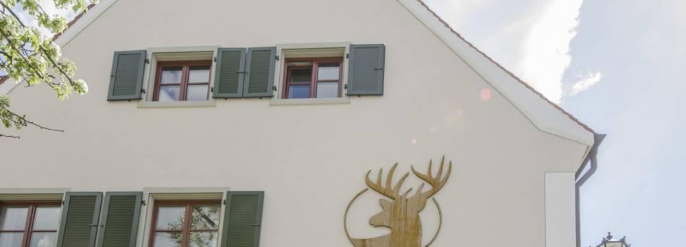 Hirschen in Gaienhofen Horn
