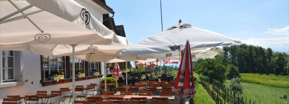 Restaurants in Stafa: Restaurant Frohberg