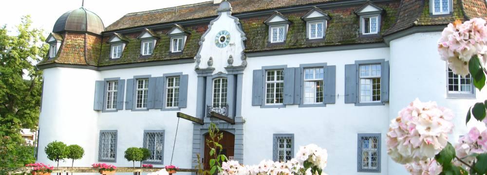 Schloss Bottmingen in Bottmingen