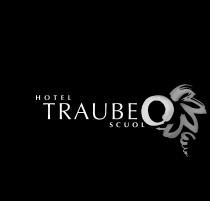 Logo von Restaurant Traube in Scuol