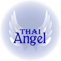 Logo von Restaurant Thai Angel St Gallen in St Gallen